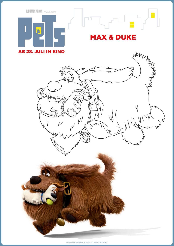 Kostenlose Malvorlage Pets Pets Max Amp Duke Zum Ausmalen