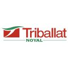 portfolio à Caen et Vire, communication visuelle du logo Tribala Noyal
