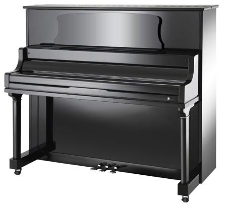 Schumann D3