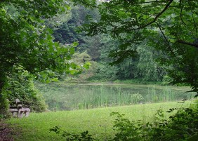 35_There are 5 ponds and one wetland on our property, all built to foster biodiversity