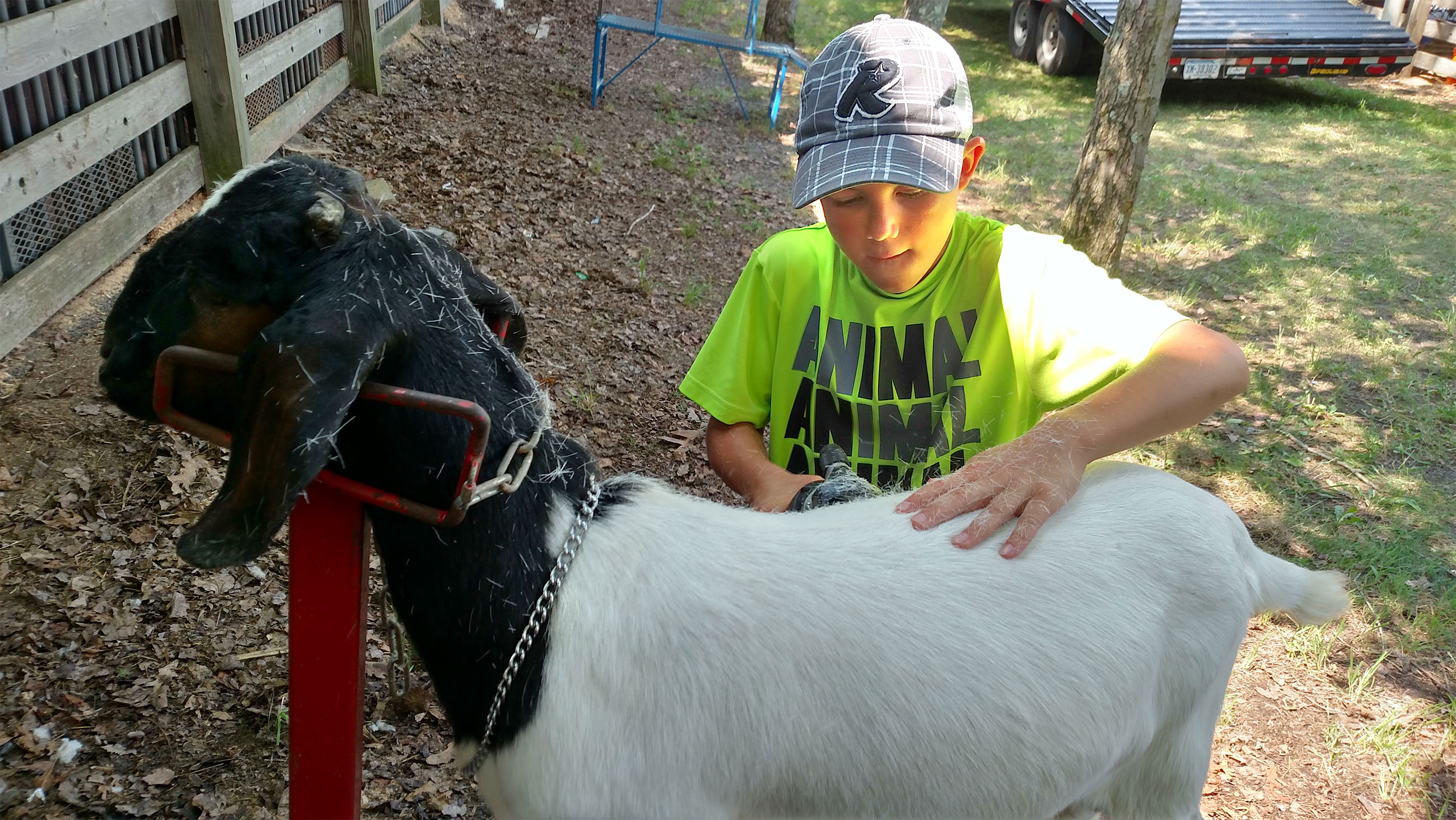 4 H For Any Occasion Schuylkill County Fair