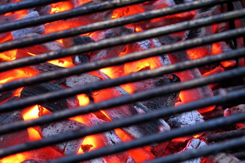 Try Out this Grilled Recipe this Summer