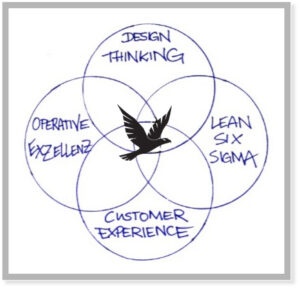 Falke Design Thinking Operative Exzellenz Lean Six Sigma Customer Experience