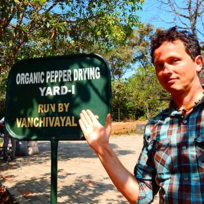 Die Säcke mit dem getrockneten Pfeffer werden zu einer Verladestation am Eingang des Nationalparks gebracht und zur Küste nach Kottayam transportiert.