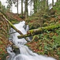 Todtmooser Wasserfälle
