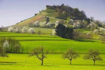 Burg Staufen im Frühling <br>© Erich Spiegelhalter/TI Staufen