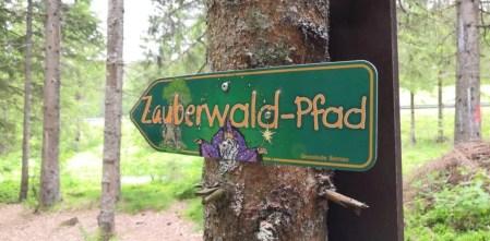 علامات لمسار الغابة السحري