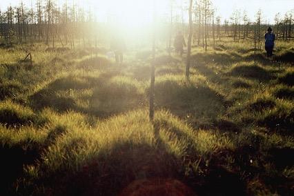 Miten marjoja poimitaan/How to Pick Berries (Finnland 2010) von Elina Talvensaari