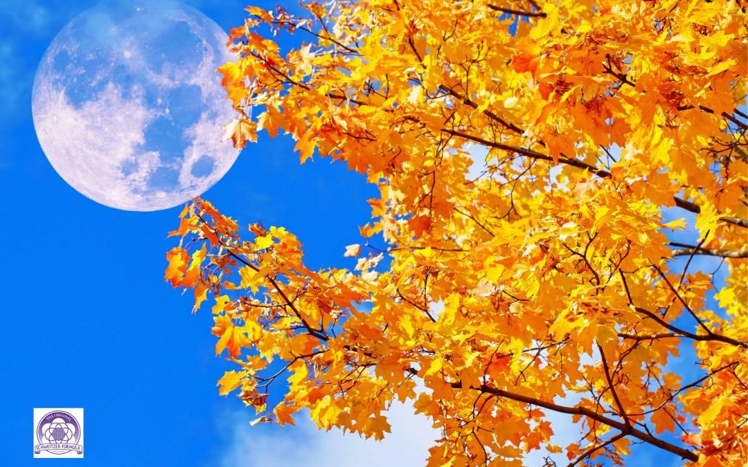 Autumn Equinox Turning Point
