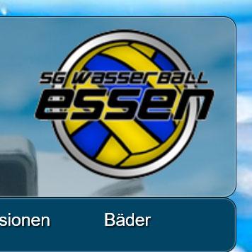 SG_Wasserball