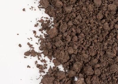 Soil Cultures