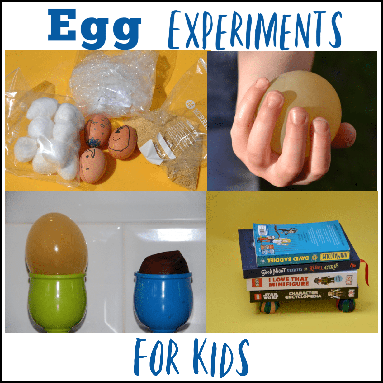 Awesome Egg Experiments For Kids