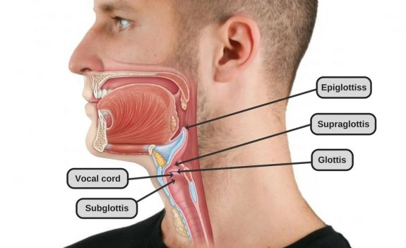 how to get rid of my adams apple