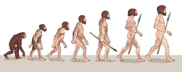 Ilustração da evolução humana (Usagi-P) s