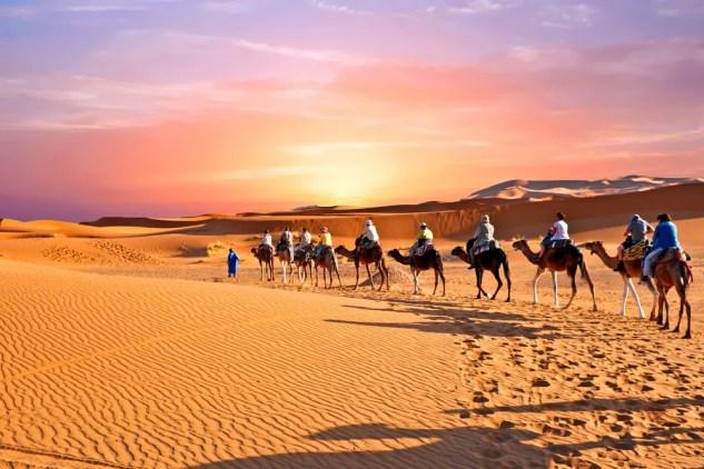 Caravana de camelos atravessando as dunas de areia no deserto do Saara, Marrocos (Steve Photography) s