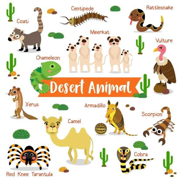 Desenho de criatura do deserto em fundo branco com nome de animal (natchapohn) s