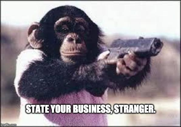 Declare seu meme de negócios