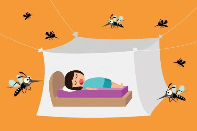 Criança dormindo sob mosquiteiro (Sai Tha) s