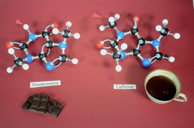 Modelos de moléculas de teobromina e cafeína lado a lado (Kim Christensen) s