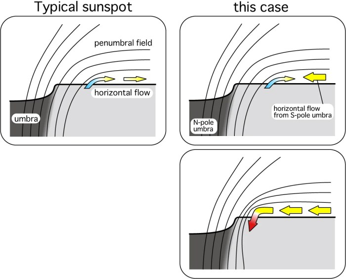 typical sunspot vs monster sunspot
