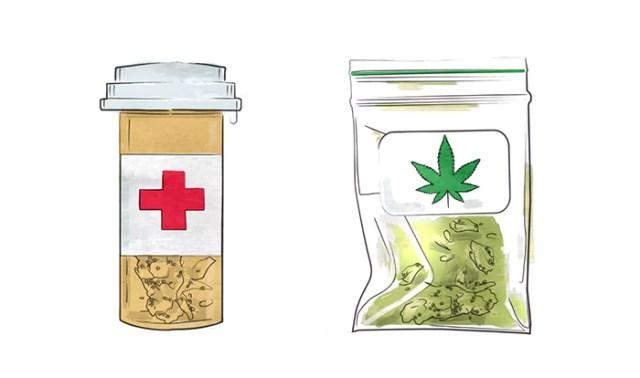 cannabis quiz medicine