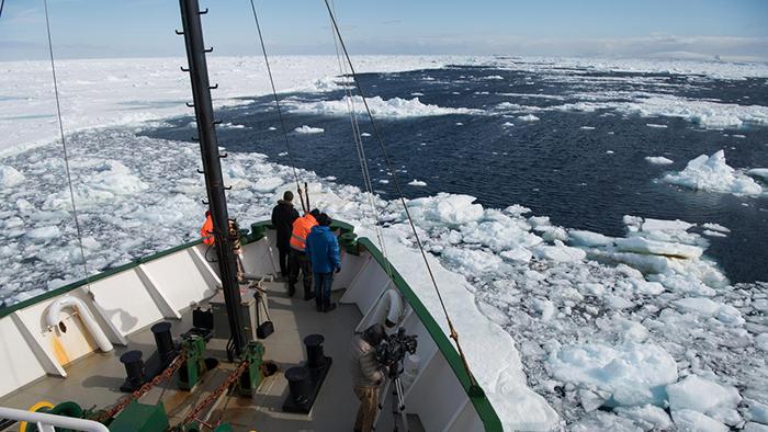 antarct 3