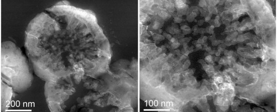 Scientists have grown microbes on real pieces of stone from Mars