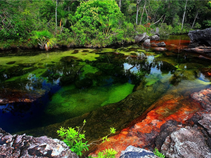 colombias-cao-cristales-is-covered-in-an-aquatic-plant-that-takes-on-hues-of-red-blue-yellow-orange-and-green-under-different-weather-conditions-most-of-the-year-it-looks-like-any-other-river-but-from-june-to-december-it-is-said-to-look-lik