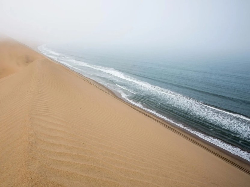 El-namib-arena-mar-situado-en-namibias-namid-naukluft-parque-es-el-solo-costero-desierto-en-el-mundo-dunas-campos-a menudo-entrar-en-contacto- Niebla-creando-un-único-ambiente-para-un-arsenal-de-fauna