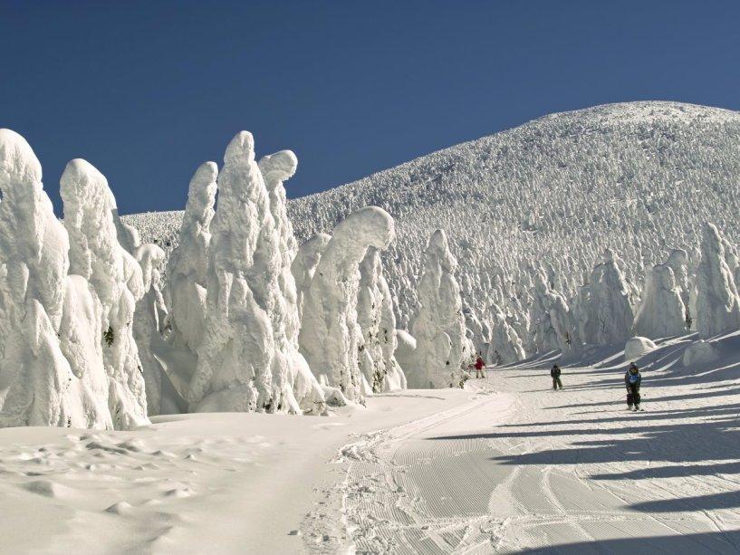 Visit-the-zao-onsen-hot-spring-and-ski-resort-localizado-en-las-montañas-de-japanes-yamagata-prefectura-y-youll-see-ice-trees -en-pesadas-cantidades-de-nieve-a-tomar-en-formas fascinantes