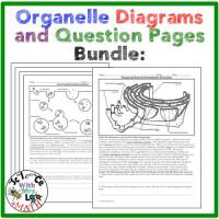 organelle readings and diagrams