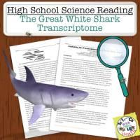 Shark Transcriptome Reading