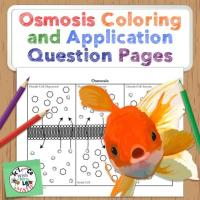osmosis coloring activity