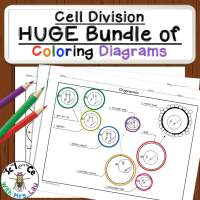 Cell Division Coloring Pages