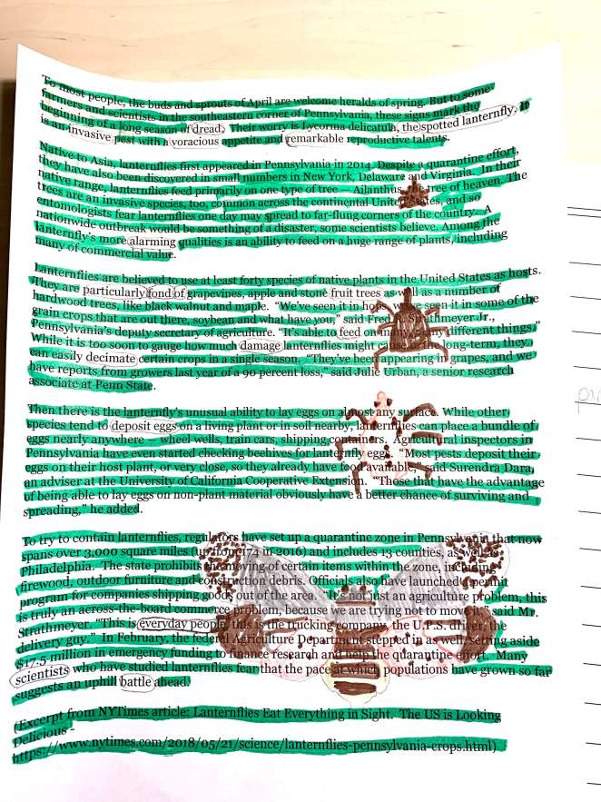 Science blackout poetry about spotted lantern flies