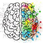 Art & Science Brain