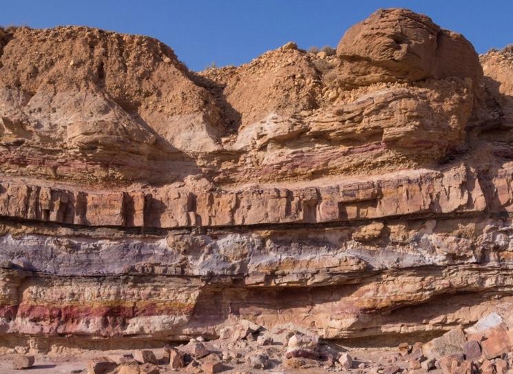 Lagen op de muur van het bos in het park van Sion State of Utah
