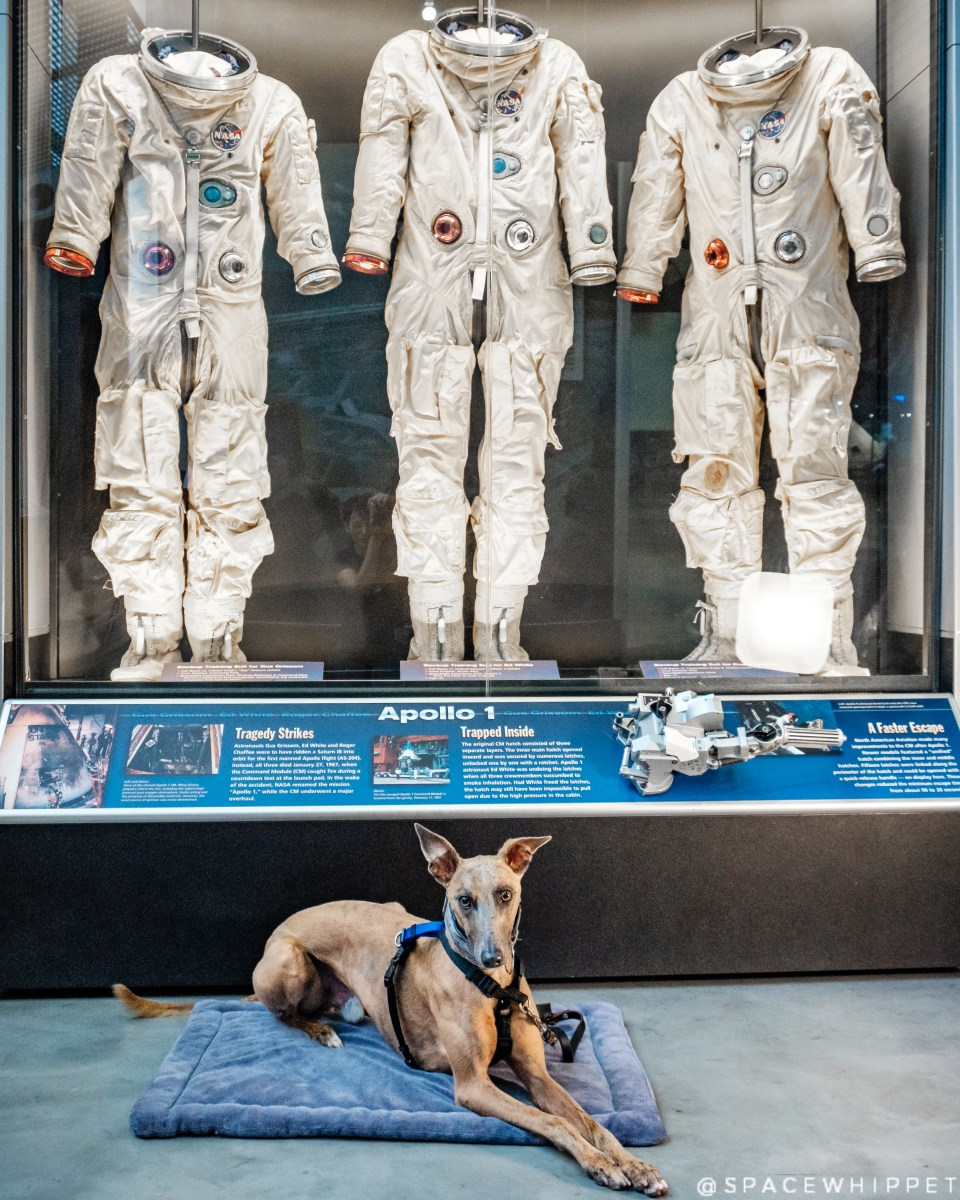 Kuiper lies on the ground in front of the backup suits for the Apollo 1 astronauts.