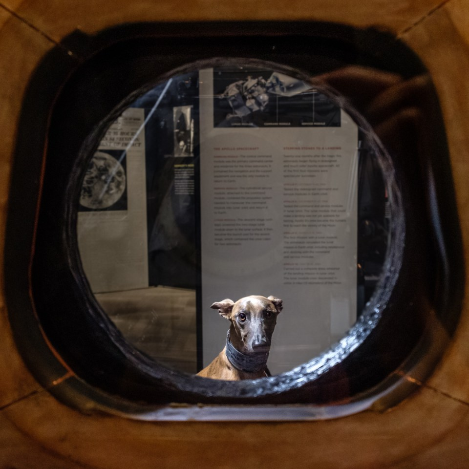 Kuiper peers at you from the other side of the Apollo 11 command module hatch.