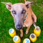 Kuiper poses with 5 quart-sized jars of peaches.