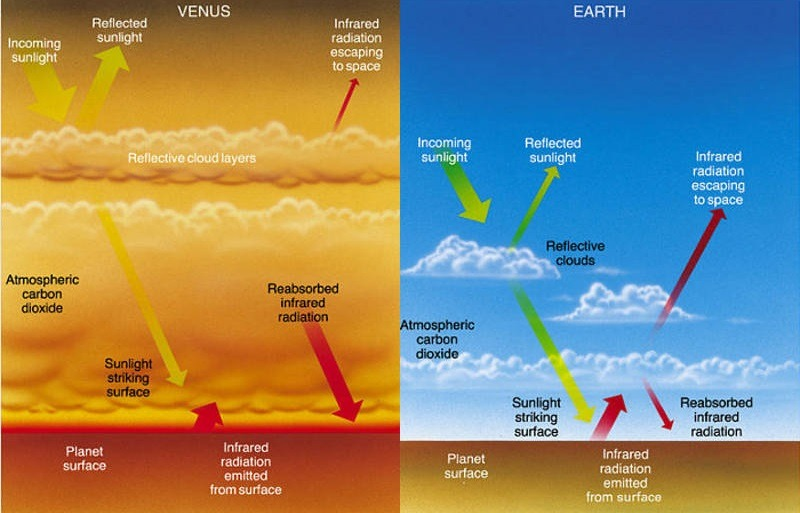 Comparison of greenhouse gas effects on Earth and Venus