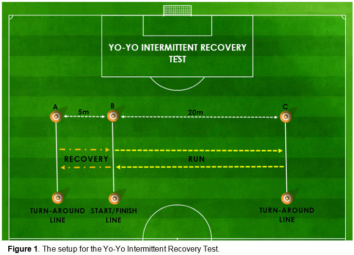Figure  The Setup For The Yo Yo Intermittent Recovery Test