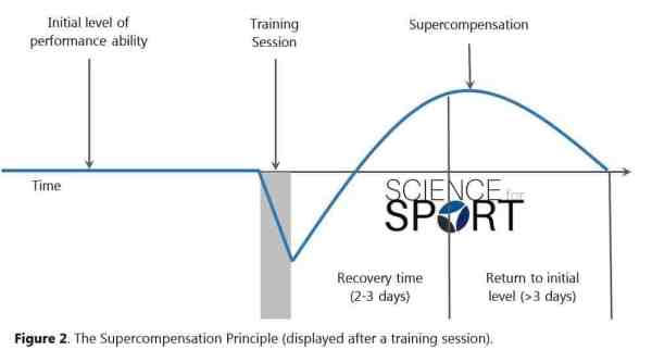 Figure 2 - Supercompensation Principle