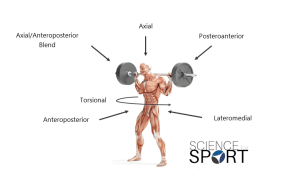 6 Primary Force-Vectors Science for Sport