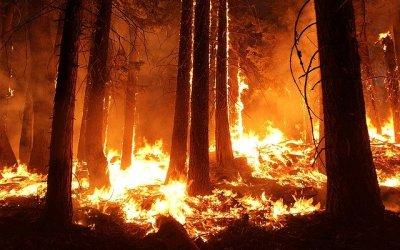 Wildfire – October 30, 2019