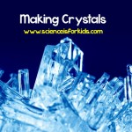 Making Crystals Experiment ~ Science is for Kids