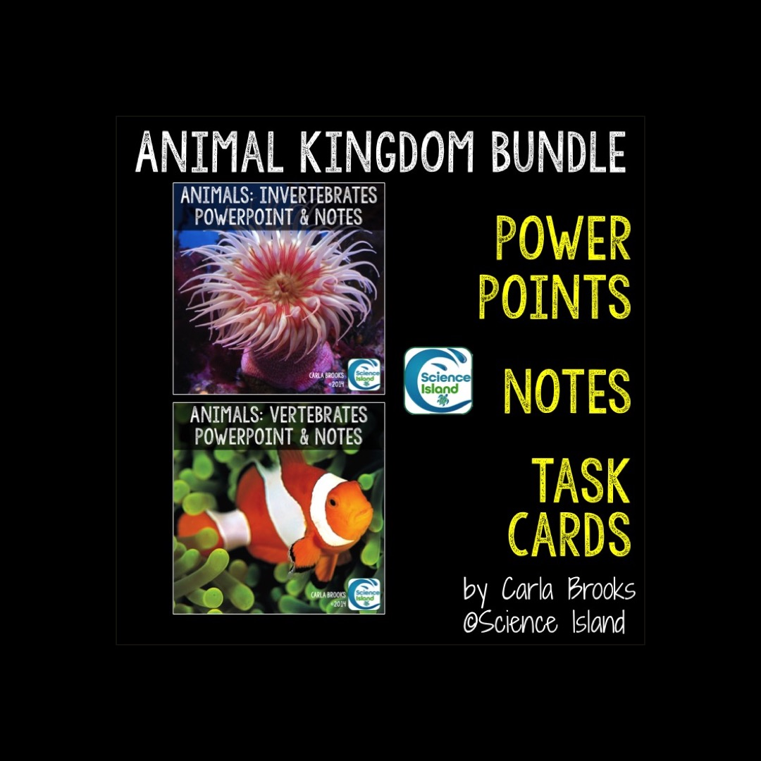 Image of: Invertebrates Menu Science Island Animal Kingdom Powerpoint And Notes Bundle Science Island