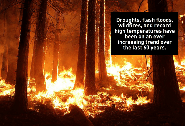 Extreme weather- wildfire