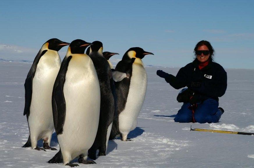 Veronika encounters Emperor penguins at the edge of Antarctica's sea ice.