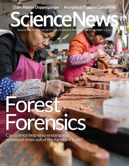 November 9, 2019 cover